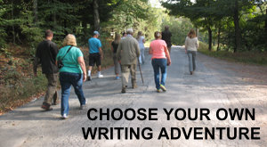 Choose your own writing adventure