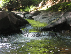 news-water2