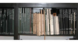 Robert Blake's sketchbooks
