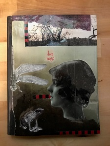 Alisa's dream notebook