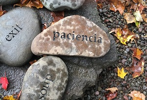 PACIENCIA in the word garden