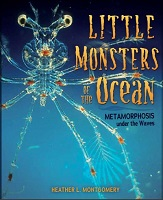 Little Monsters by Heather L. Montgomery