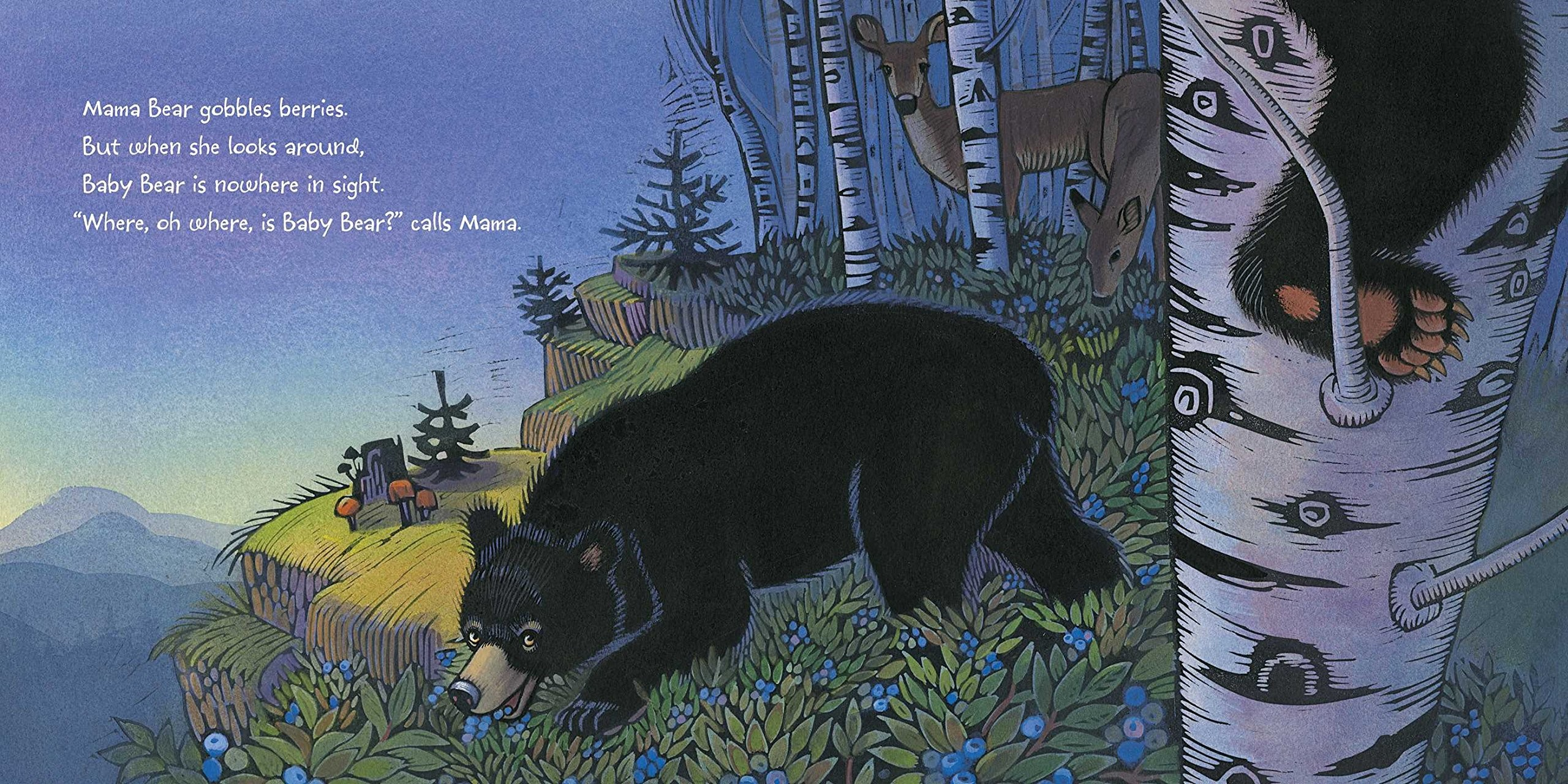 art from Where Oh Where is Baby Bear?