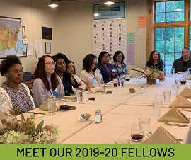 Diversity Fellowship Meet Our Fellows